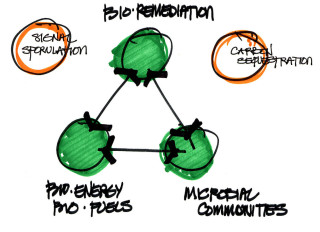 Tucson architectural sketch for Bio-remediation